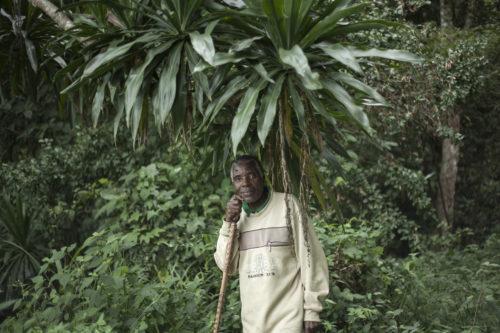 Eston standing in the rainforest